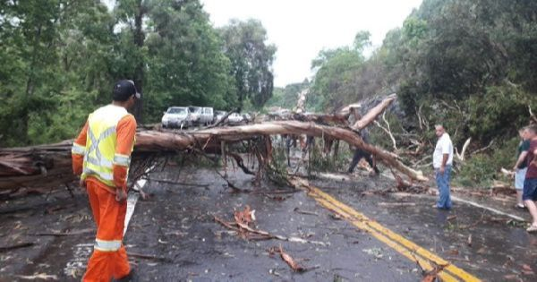 Tempestades provocam ventos superiores aos 100 km/h em pontos da Serra gaúcha
